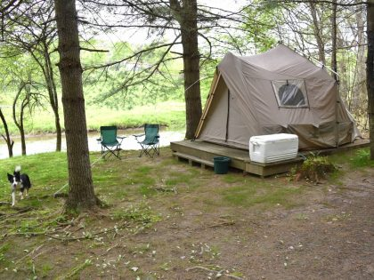 Wag 3 Tent