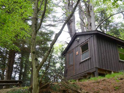 Bark 2 Cabin